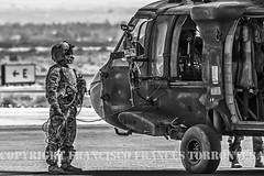 COPYRIGHT FRANCISCO FRANCS TORRONTERA (220) (OROEL (Francisco Francs Torrontera)) Tags: isaf usarmy afganistan afganistanwar fsbherat helicopter helicoptercrew helicopters sikorsky sikorskyuh60blackhawk uh60blackhawk uh60 blackhawk militaryhelicopters chopper