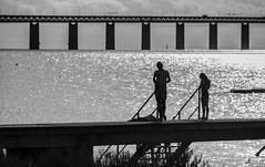 Silhouettes on a dock (Infomastern) Tags: malm sibbarp bridge bro bruygga dock hav pier sea silhouette siluett water resundsbron