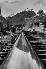 Rails Eye View (rnasset) Tags: railway cp canmore alberta train tracks reflection east end rundle