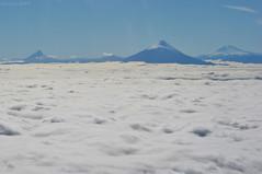 Navegando el mar de nubes / Sail a sea of clouds (Javiera C) Tags: chile osorno calbuco volcano volcán nubes clouds plane avión cielo sky blue azul montaña mountain volar fly