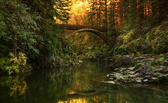 Moulton Falls State Park in Autumn (Yacolt, WA) (Sveta Imnadze) Tags: nature landscape fall sunrise lewisriver eeastfork yacolt wa footbridge reflection i