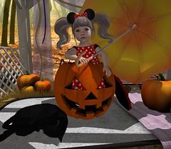 #791 - One Last Wish (aa ( Lellee Resident )) Tags: blues toddledoo cutebytes littlestars comesoon ns