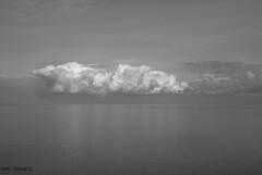 DSC_0373 (Kaigara Online) Tags: enisala cetate capul dolosman bw clouds water reflections trees fields romania tulcea jurilovca birds cows sheep cross cinema gods ruins arganum citadel medieval