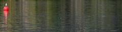 BOYA ROJA Y REFLEJOS (Joan Biarns) Tags: banyoles llac lago estany pladelestany girona catalunya boya reflexes reflejos canon7d
