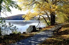 Autumn path (Lojones13) Tags: outdoor serene path autumn newyork hudsonvalley fall foliage trees water westchestercounty annsvillecreek