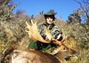 New Zealand Red Stag Hunting - Christchurch 25