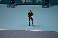 Novak Djokovic (CoasterMadMatt) Tags: world pictures city greatbritain november autumn england london english sports court season photography nikon tour photos unitedkingdom britain south united greenwich great hard o2 royal atp kingdom indoor millennium east arena tennis tournament photographs 02 finals dome gb match borough british players southeast sporting sportsman novak tenniscourt barclays hardcourt theo2 millenniumdome 2014 nikond3200 sportsmen capitalcity royalborough tennistournament novakdjokovic d3200 djokovic o2arena the02 02arena atpworldtourfinals barclaysatpworldtourfinals royalboroughofgreenwich coastermadmatt november2014 coastermadmattphotography