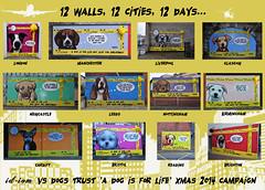 12 walls, 12 cites, 12 days - id-iom vs Dogs Trust (id-iom) Tags: street nottingham uk england urban dog streetart london art beagle dogs face wall liverpool bristol newcastle manchester reading graffiti cool eyes stencil birmingham collie brighton paint head glasgow leeds arts cardiff hound pug canine bulldog trust vandalism spaniel spraypaint dalmatian brixton bassett lhasaapso idiom aerosolpaint adifl