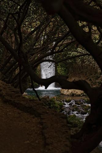 Rundweg zum Banias-Wasserfall