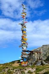 Oversized signpost, Stanley (Ugborough Exile) Tags: falklands stanley d7000 nikon 2014 nikonpassion