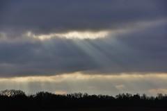 Ray of light (osto) Tags: denmark europa europe sony zealand scandinavia danmark slt a77 sjlland osto alpha77 osto december2014