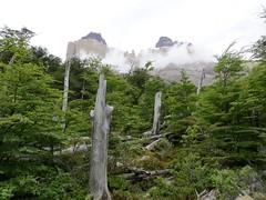 Torres del Paine-171