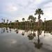 Lagoa das Araras - vila Bom Jardim - Nobres - MT