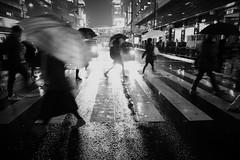 A Crosswalk at Rainy Night (Takashi.Tachi) Tags: