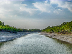 Sarakkhali - An Watery Highway (Kingshuk Mondal) Tags: tiger reserve kingshuk sundarban sundarbannationalpark kingshukmondal