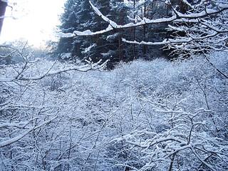 il est où l'hiver ??
