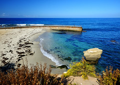 La Jolla Cove in San Diego, California (` Toshio ') Tags: ocean california sea people usa beach water sand rocks waves pacific sandiego cove jetty sealions reef lajollacove childrenspool toshio xe2 fujixe2