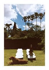 Las chicas y las reposeras. (Florencia Bianchi Granados) Tags: cinema santafe film argentina analog 35mm canon 50mm kodak 28mm 85mm cine 100mm rosario pelicula funes 1n 250d canon1n vision3