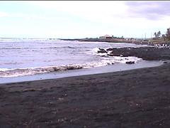 Punalu'u Black Sand Beach