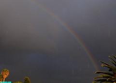 RainbowInThePouringRain (mcshots) Tags: california travel winter sky usa storm nature water rain weather clouds evening coast rainbow sunday stock stormy malibu neighborhood pch socal mcshots raining losangelescounty