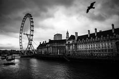 London Eye [Explored]