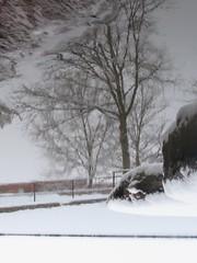 Snow 3-5-2015