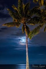 Pacific Moonlight (Steven Lamar) Tags: ocean moon reflection night clouds canon stars hawaii glow maui palmtrees pacificocean moonrise tropical moonlight cloudformation kihei canon7d pnwphotographer stevenlamar lightfxstudio