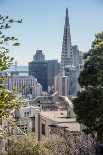 View of Trans American Pyramid from Russian Hill SF