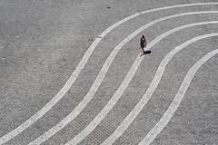 [Bundeskunsthalle  Bonn / Juli 2016] (querformat-fotografie) Tags: street people urban bw white art lines architecture photography europe bonn fotografie graphic german orte unposed mainz bundeskunsthalle linien zufall strassenfotografie alltagssituation achimkatzberg querformatfotografie