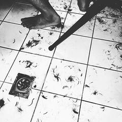 (Xiang lu) Tags: feet bathroom haircut hair