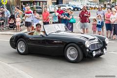 1958 Austin Healey - Jacaranda Parade 2015 (sbyrnedotcom) Tags: 2015 people events grafton jacaranda parade rural town austinhealey 2door sportster sedan nsw australia