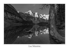 Lac Mono Moraine (ken.krach (kjkmep)) Tags: lakemoraine banffnationalpark