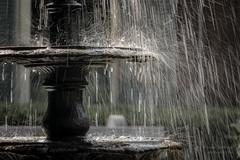 Raining sunshine (paulstewart991) Tags: canon70d canadian oakville fountain water summer shallowdof rain