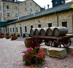 Barrels (krys.mcmeekin) Tags: barrels distillerydistrict toronto outdoor nikon d750 brickwork