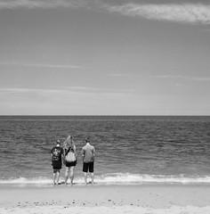 Race Point Beach (John's Vintage Cameras) Tags: 6x6 film analog vintage square capecod massachusetts agfa ilford fp4 ansco isolette speedex foldingcamera madeingermany