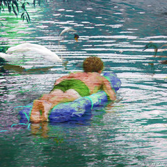 Swimming with swans (Lemon~art) Tags: man float swans swimming swan cygnet river texture manipulation summer holidays nature bird water peace calm happy