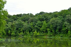 Serenity (Jake (Studio 9265)) Tags: spring mill state park mitchell indiana usa united states america outdoor photography nature woods green rural lake water trees