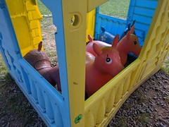 Intermission (lunat1k) Tags: pony shed lookingdown lookingup bulgaria nexus5x colors toys intermission break resting