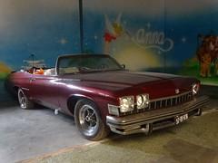 Buick Le Sabre 1974 / 1999 Apeldoorn (willemalink) Tags: buick le sabre 1974 1999 apeldoorn
