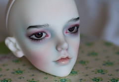 IMG_8320 (greenwolfy) Tags: makeup faceup bjd dollzone grey dollzonegrey
