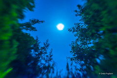 if I was a werewolf... (Sailormetalla) Tags: street moon lensbaby canon vineyard photographer country shift happiness land 5d tilt felicit makii lensbabycomposer