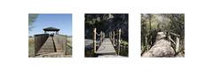 (Irene Paradinas) Tags: park bridge parque españa puente spain nikon national tres octubre nacional 2014 castillalamancha cabañeros diferencia tríptico parquenacionaldecabañeros d5100 nikond5100