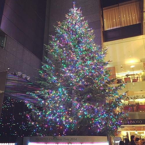 #xmastree 2014