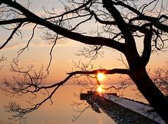 sunset (veebruar) Tags: sunset sea tree seawall vanagram
