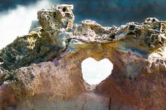 Motherly Love (Nicholastran213) Tags: ocean water canon hawaii rocks heart maui