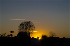 Perfiles del atardecer / Profiles sunset (Tonigp) Tags: sol contraluz atardecer rboles ciudad olympus puesta sombras negros