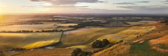 Fields of Gold (SimonMastersPhotography) Tags: uk sussex panoramic southdowns goldenhour commended landscapephotographeroftheyear lpoty2014