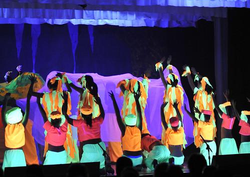 2010 Aladdin 19