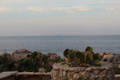 L'isola di Ustica all'orizzonte - The island of Ustica horizon (Stefano Piazza) Tags: panorama ustica mare palermo sferracavallo barcarello stefanopiazza