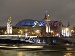 Grand Palais (Chantal van der Ende-Appel) Tags: paris seine iceskating parijs grandpalais